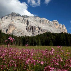 Wandern in La Val Wengen © TV La Val