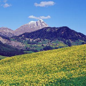 Wandern in La Val/Wengen © TV La Val