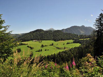 Wohlfühlen im Naturpark Trudner Horn