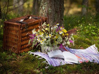 Picknick im Frühling © Hotel Langeshof
